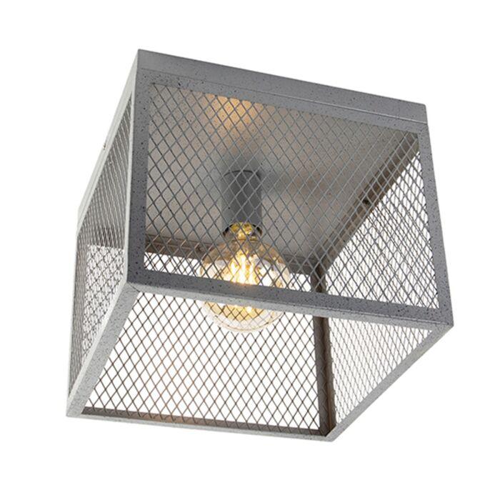 Tööstuslik-laelamp-antiikhõbe---Cage-Robusto